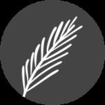 DZ Floristik Icon Produkte